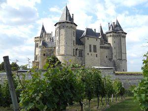 Origine Du Nom De Ville Saumur
